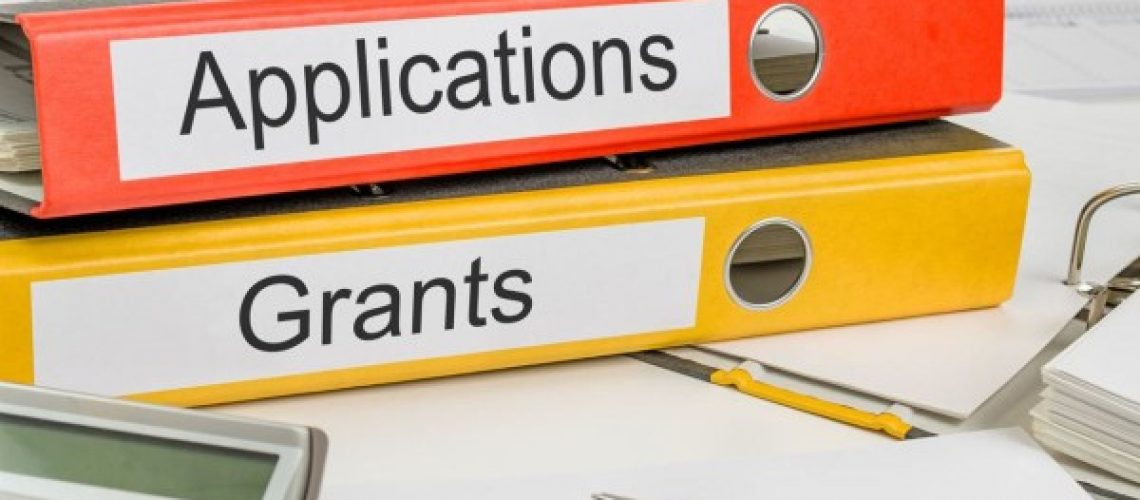 The Ultimate Guide to Government Grants in Singapore